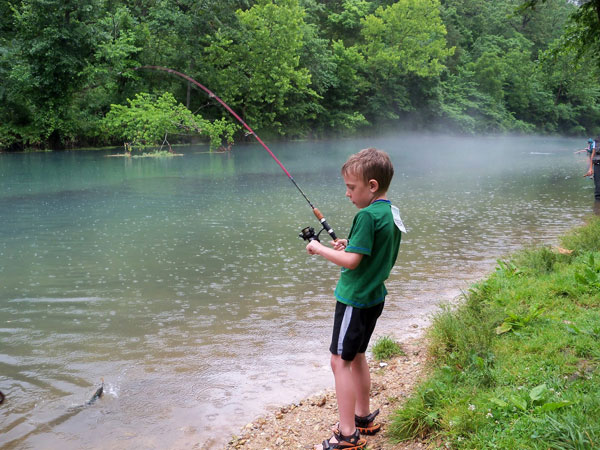 Arbors at island landing hotel suites pigeon forge for Tn fishing license online