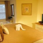 King bed, master bedroom with in-room Jacuzzi set in window over-look