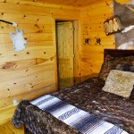 Lower floor bedrm with bath and jet tub -  Luxury 5 Bed cabin rental, Pigeon Forge