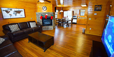 Economy 3 Star Cabin - Moonshine Ridge on secluded 7 acres on wooded hillside in Wear's Valley - 12 mins from town - sleeps 6 in 2 beds and 1 sleeper sofa