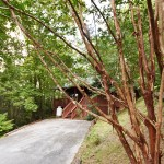 Moonshine Ridge vacation rental Wear's Valley Pigeon Forge Exterior with parking area